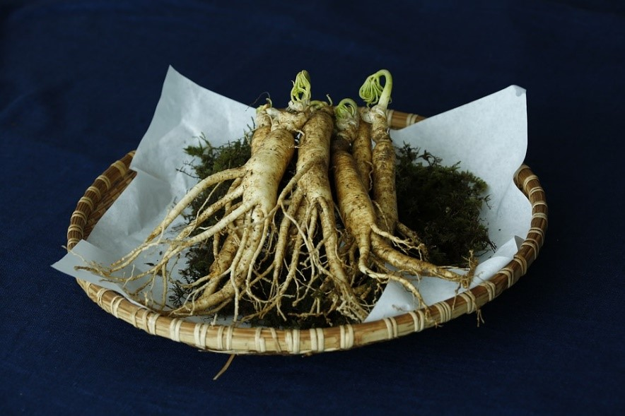 One ginseng is not the other