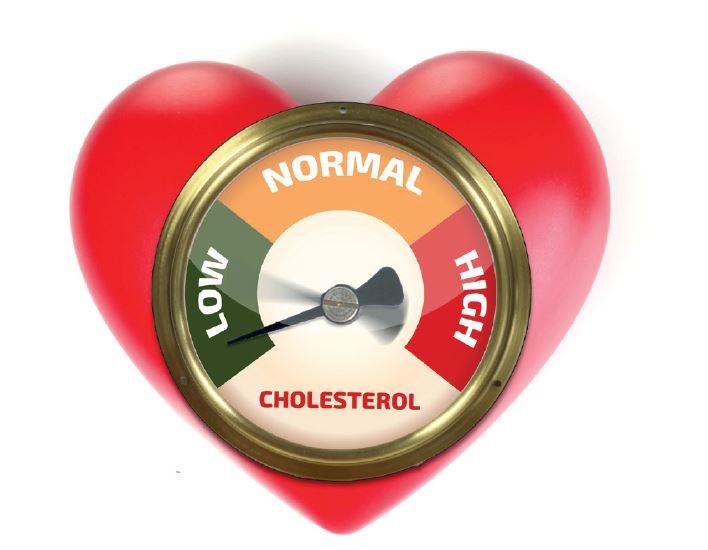 Wat is cholesterol en hoe hou je het onder controle?